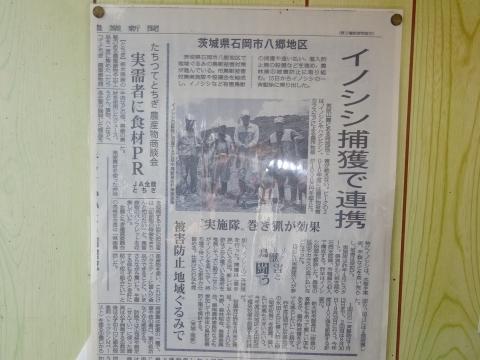 「朝日里山学校いのしし解体所視察」⑥