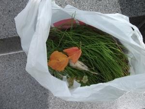 200808草袋