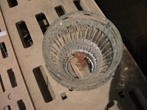 200902水に漬ける
