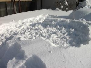 210112雪捨て場