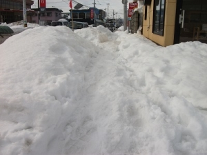 210116雪の歩道