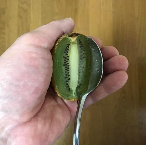 20210124_kiwifruit_01.jpg