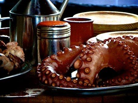 octopus-625202__340.jpg