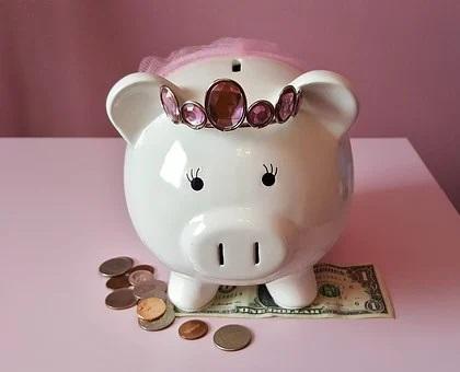 piggy-bank-1446874__340.jpg