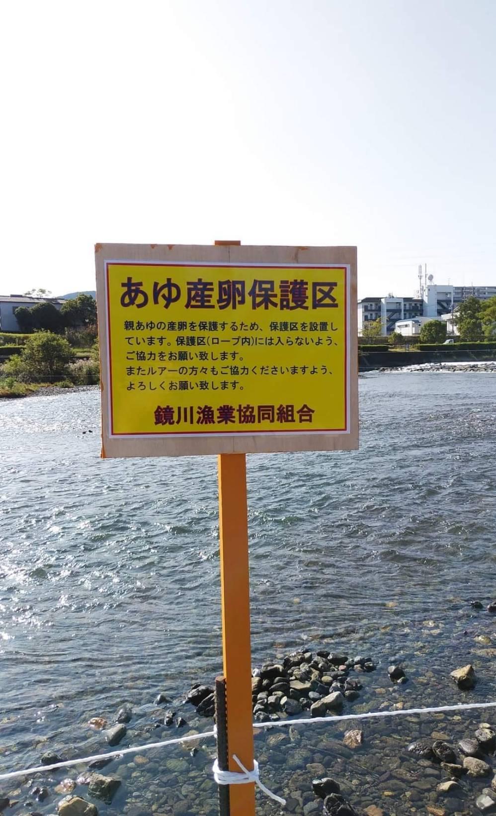 鏡川の鮎産卵場所の整備