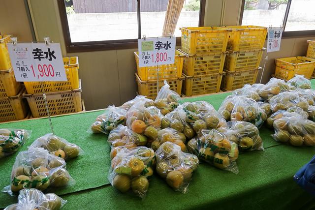 200822-JA香川県和田支所-004-S