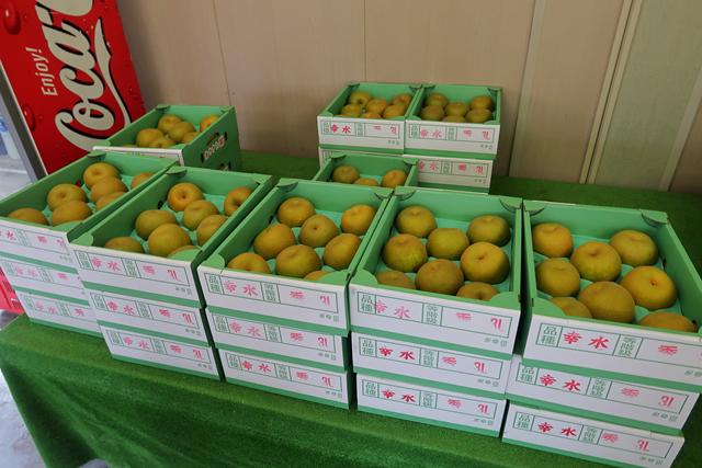 200822-JA香川県和田支所-006-S
