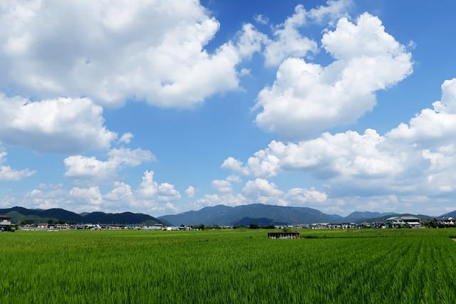 200828-備前福岡 一文字うどん-003-S