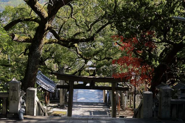 201121-宇夫階神社-012-S