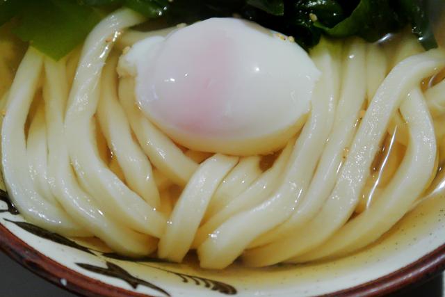 210310-Udon Kyutaro-013-S