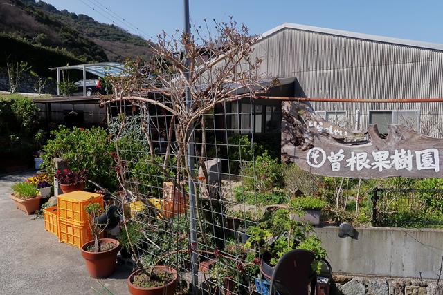 210319-曽根果樹園-003-S
