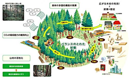 森林の多面的機能01