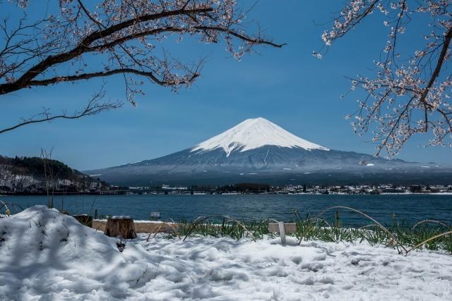 富士とサクラと雪