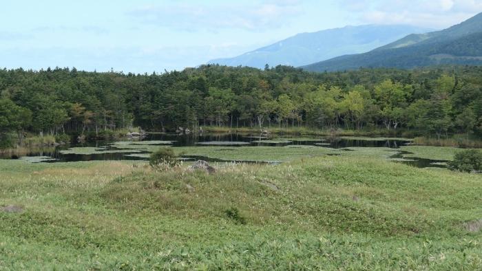 知床五湖 (7)