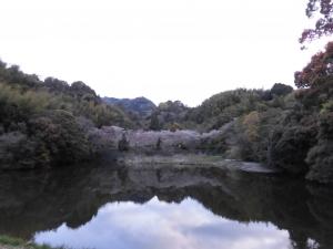 200411-1.jpg