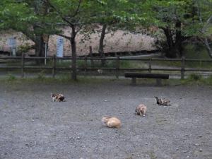 200510-3.jpg