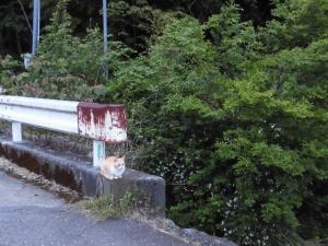 200510-4.jpg