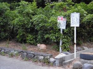 200607-2.jpg