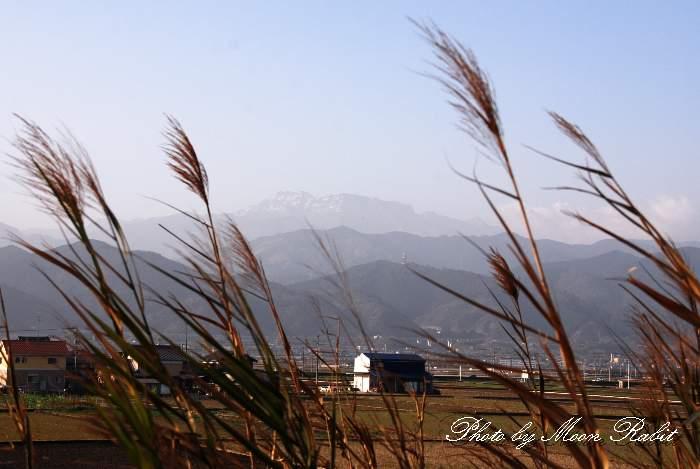 葦 (あし、よし)と石鎚山 愛媛県西条市禎瑞下