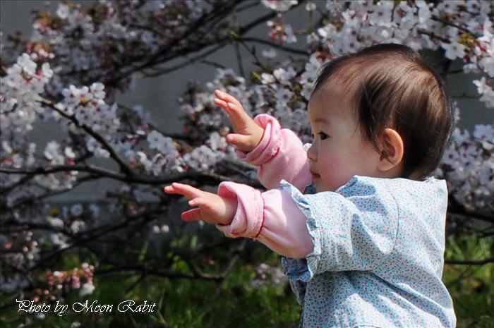 クラレ西条観桜会のお子さん