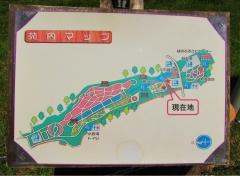 hananooka200530-201.jpg