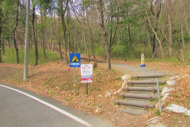 mikamo200307-113.jpg