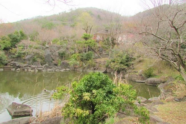 mikamo200307-163.jpg