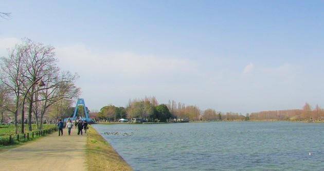 mizumoto200322-132.jpg