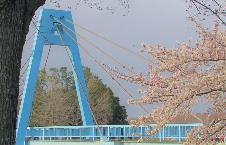 mizumoto200322-139.jpg