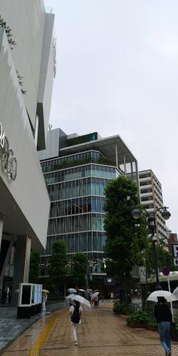 200622f.jpg