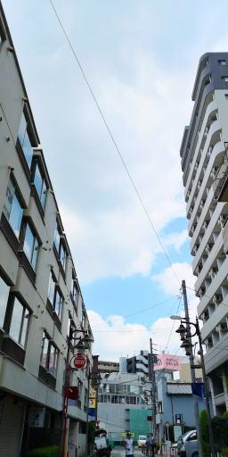 200826h.jpg