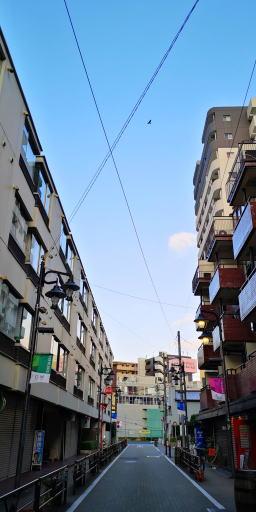 201113d.jpg