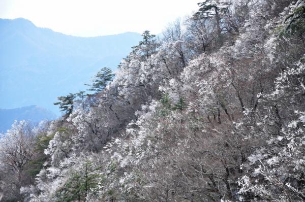 3岩黒山200403