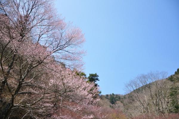 1小田深山200409