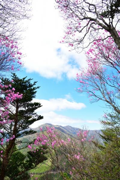 13三ツ森山200508