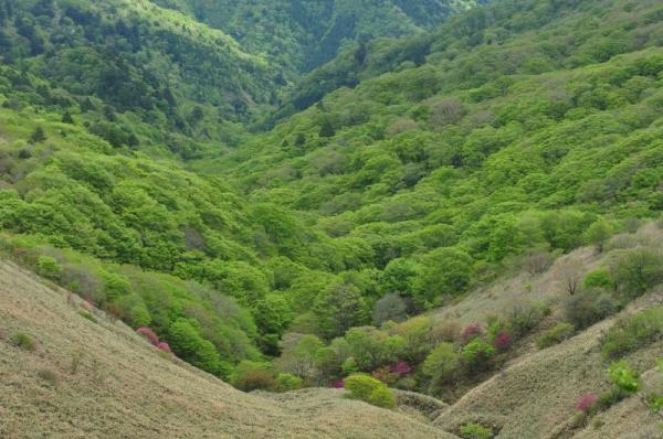 20大川嶺200521
