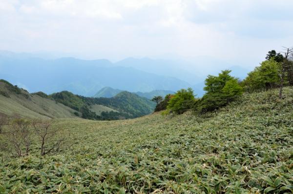 12手箱山200529