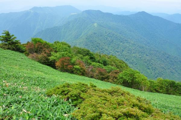 3筒上山200804