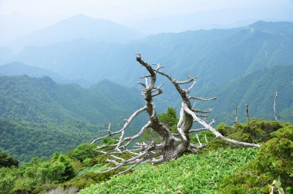 2筒上山200804