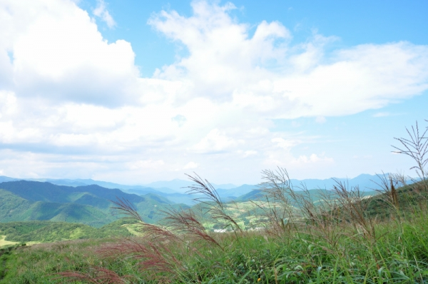 30大野ヶ原200831
