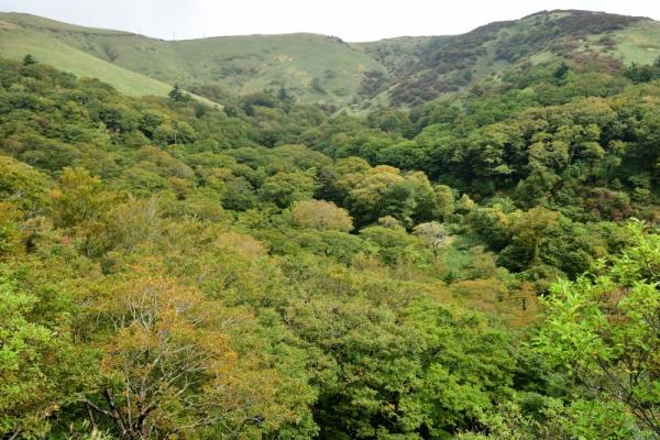 4笠取山201004
