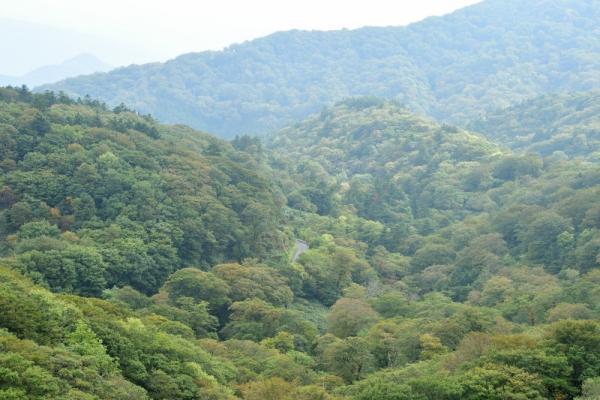 3笠取山201004