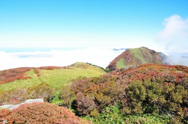 6笹ヶ峰201011
