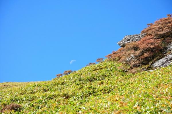 4笹ヶ峰201011