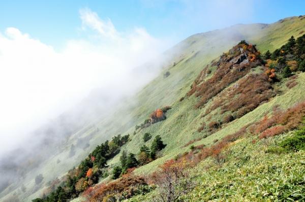 3笹ヶ峰201011