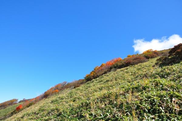 9笹ヶ峰201011