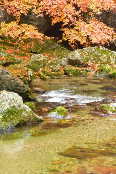 1小田深山201107