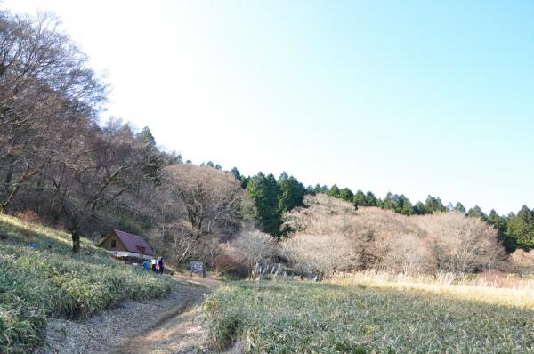 2皿ヶ嶺201206