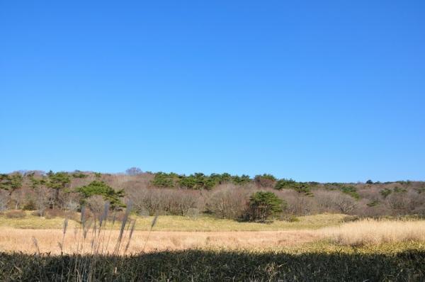 1皿ヶ嶺201206
