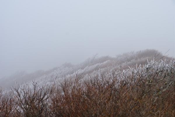 3笠取山201212
